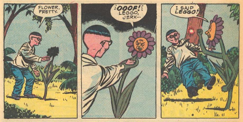 A flower does not appreciate skinny Herbie.