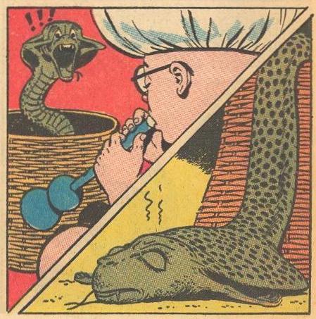 A cobra faints.