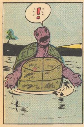 A turtle shrugs.